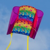 Drak SLED Beach Kite | Butterfly